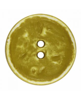 polyamide button round shape vintage look and 2 holes - Size: 23mm - Color: light green - Art.-Nr.: 346831